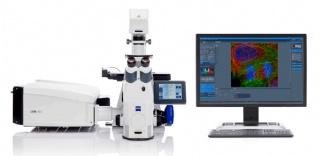 激光扫描共聚焦显微镜 LSM900/980